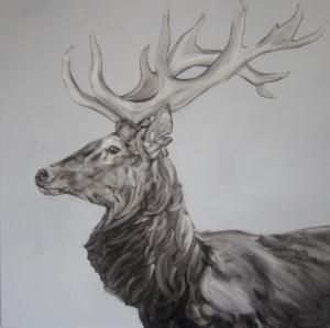 Stag ( profile )100x100cm